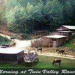 Horses coming off open range for breakfast