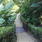 Walkway to our villa #306