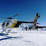 Snow Landings
