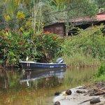 Geniet van de natuur bij en om El Arbol