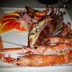 Lobster, Shrimps & Langoustines