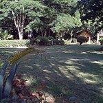 (Blackberry quality) -- looking toward one of the bungalows