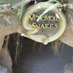 venomous enter park