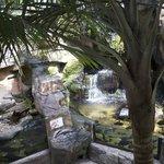 Currumbine park nside