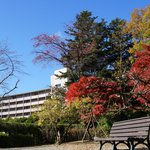 Autumn colours at the hotel's foreground
