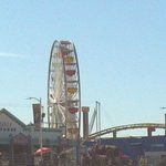 The ferris wheel on the Santa Monica Pier during a tour of Malibu and Venice.