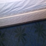 Great quality at the Rapid City LaQuinta Inn and Suites (ISIS Hospitality)