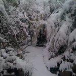 Heavy snow ,october2012..Blackheath,the highest town in worl