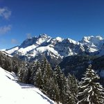 Dents Blanches 2756M