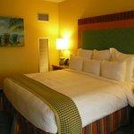 Renaissance Curacao Resort & Casino, Habitación