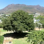 View at the Kasteelberg from the room