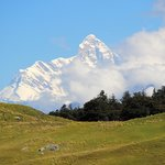 Day Hike: View of  Nanda Devi peak, the patron Goddess of Garhwal & Kumaon and a World Heritage