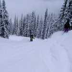 powder run Revelstoke