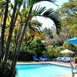 Foto de L'Orangerie Cuernavaca