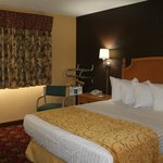 Handicap accessible room with 1 queen size bed