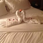 the swan that was made for us in the room