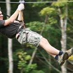 Treetop Adventure Park Zipline