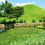 Daerungwon - summer