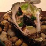 Ossietra di Venezia Kaviar und Felsen Auster