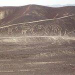 Geoglifos Paracas, en Llipata - Palpa - Ica - Perú
