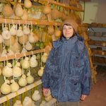 Foto Azienda Agrituristica Invidiata