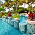 Festive pool plants