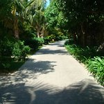 The path to our villa