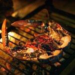 Homard de la côte grillé au feu de bois