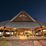 Ingeli Forest Resort