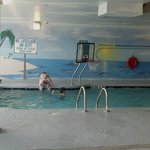heated indoor pool w/bball goal