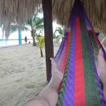 Chilling out in a hammock beachside