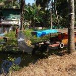 Backwater Scene from Boat Trip
