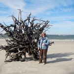 Driftwood beach (how cool is that?)