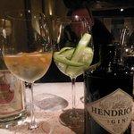 aperitief: laat gastheer een voorstel doen...  Schitterende Gin Tonic's