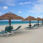 one of the resort  Tiki umbrella shades