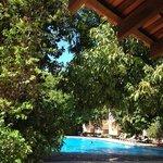 Vista de la piscina desde el ranchito