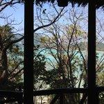 vista desde el bungalow / bungalow view