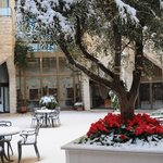Inbal central courtyard garden in snow (Jan 2013)