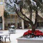 Inbal central courtyard garden in snow (Jan 2013)
