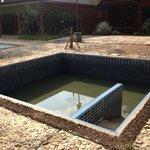 Hot tub - half full and breeding mozzies
