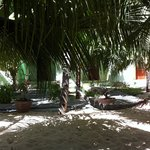 At Cocosand: under the palms, facing the rooms