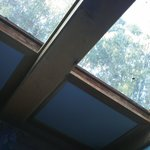 Sunny view from bed in Blue Room.