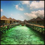 The beautiful water villas of Halaveli