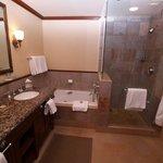 vista del baño ducha y jacuzzi