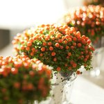 Fleurs Reception