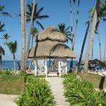 Beach Gabizo