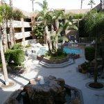 garden pool area