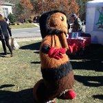 Wooly Worm Festival in Banner Elk