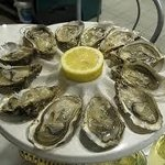 Natural English Rock Oysters