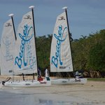 Hobie Cats - free for guests use